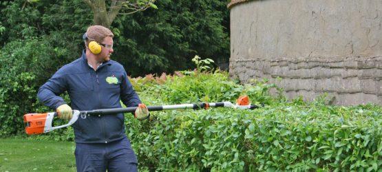 PHLP Gardening Team